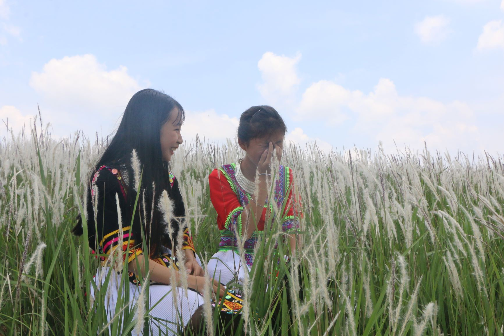 A grass hill that is loved by thousands of people - photo 5