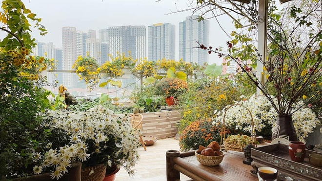 Woman with 'unique' flower garden on the terrace of 200 square meters in the center of the city - photo 1