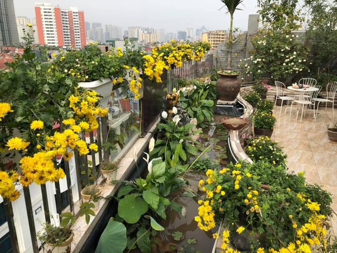 Woman with 'unique' flower garden on a terrace of 200 square meters in the center of the city - photo 6