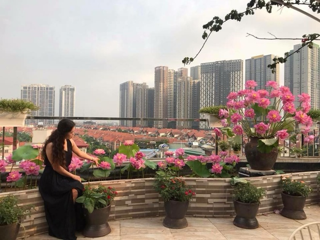 Woman with 'unique' flower garden on a terrace of 200 square meters in the center of the city - photo 9