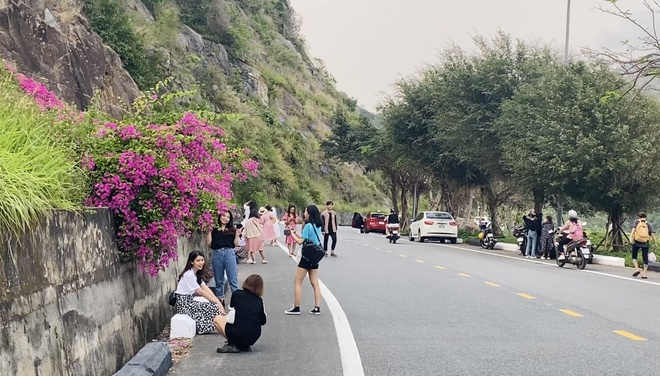 Fall in love with the beauty of the 'most beautiful' confetti road in Da Nang - photo 2