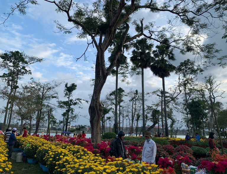 Image result for chợ hoa ế ẩm