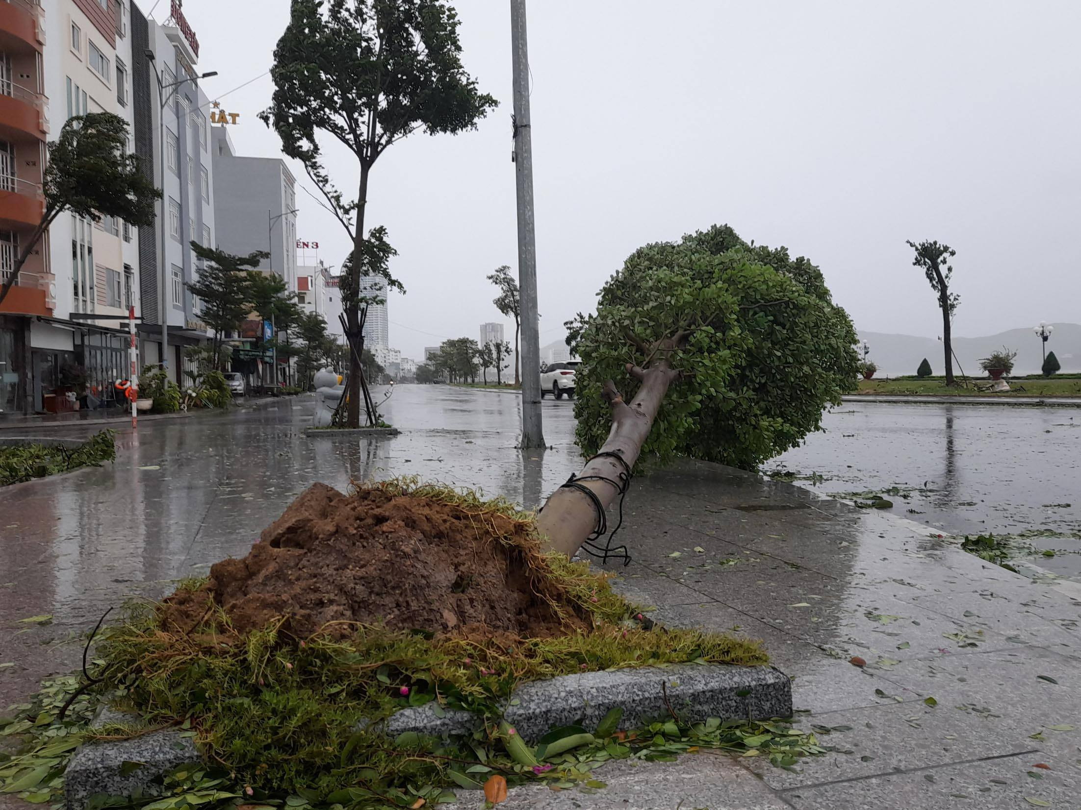 Storm number 9 hit the mainland, Kwang Nam had heavy rain with strong winds - Figure 7